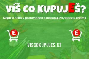 Obrázek projektu