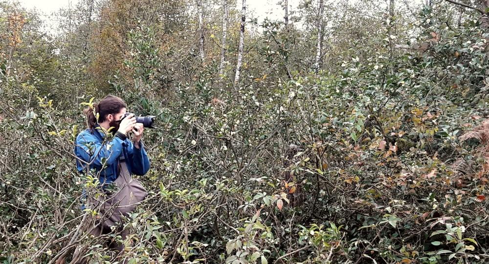 Brother Sur mezi divokými čajovníky na Zahradě