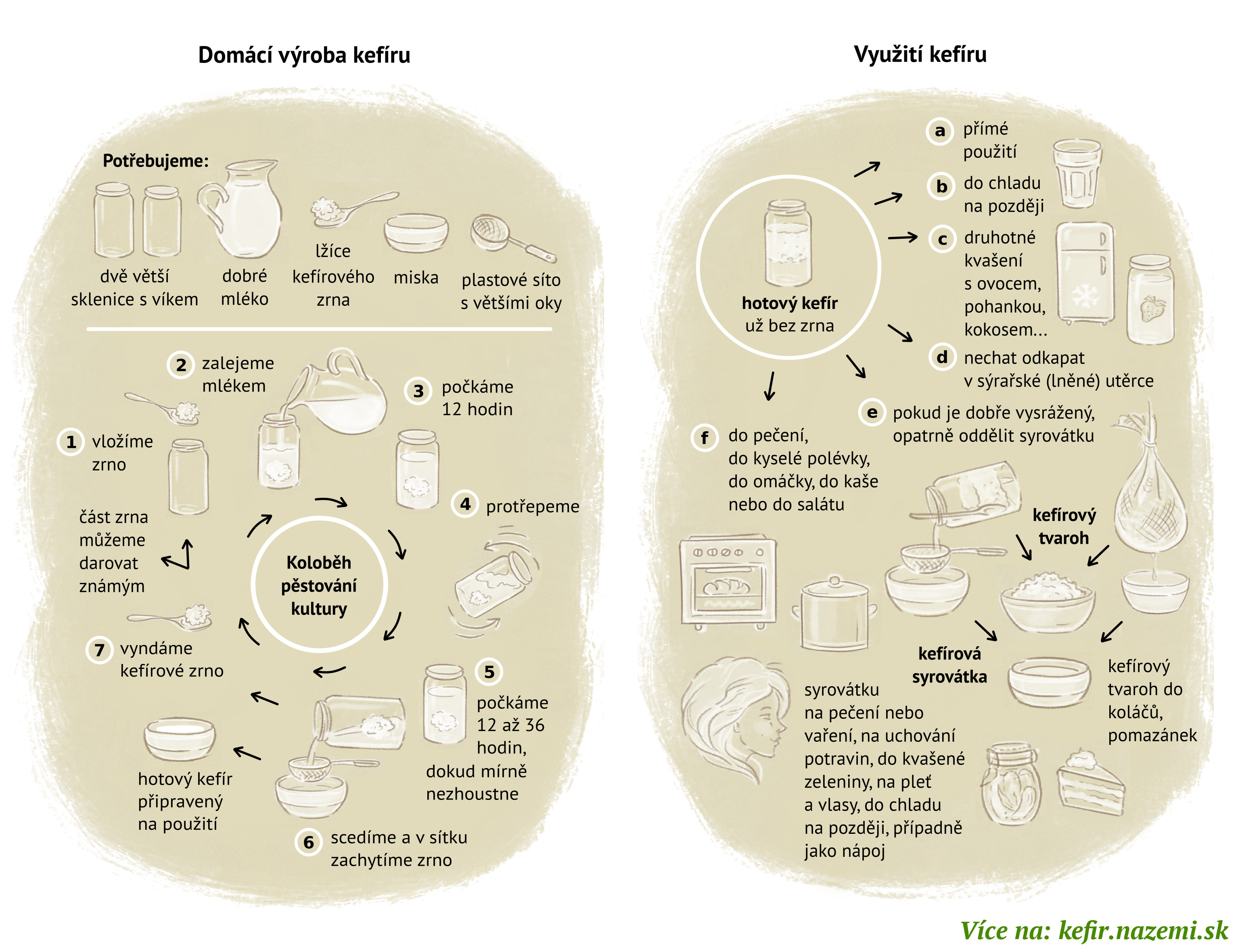 Infografika: Domácí výroba a využití kefíru