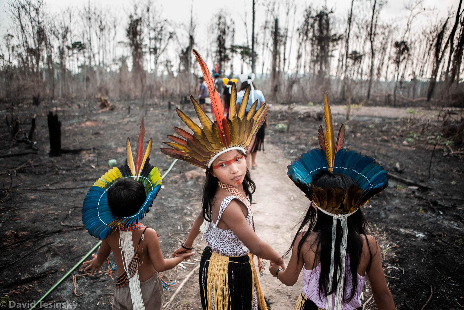 Oběti ohňů v Amazonii (Brazílie)